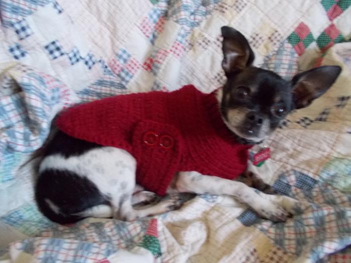 crocheted2.jpg